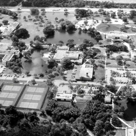 Overview of 365体育网站 campus in 1989.
