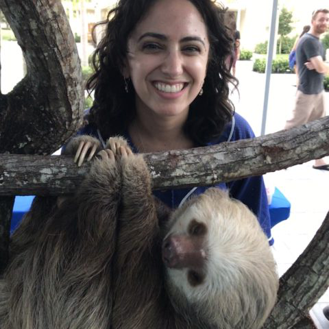 Lynn employee poses with a sloth on campus
